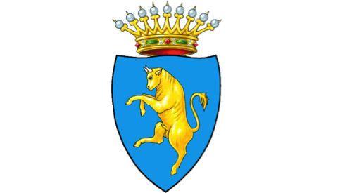 escudo de turin